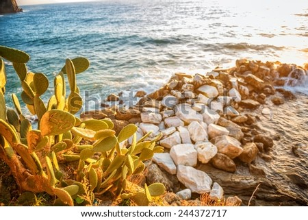 Sunset over the cliffs - stock photo