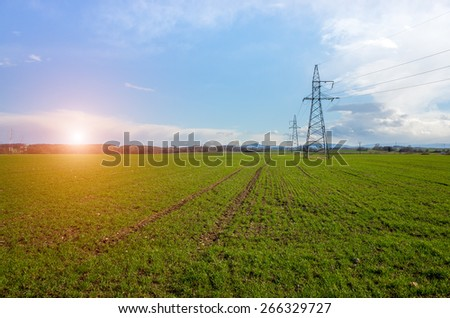 Sunset over the powerlines on the large green field - stock photo