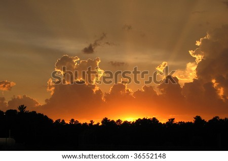 Sunset ray - stock photo