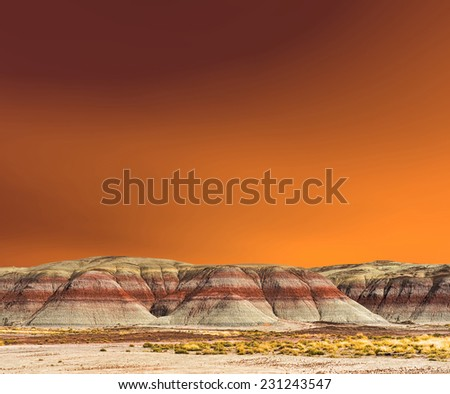 Sunset scenic landscape of ancient petrified forest - stock photo