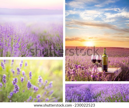 Sunset sky over a summer lavender field in collage composition. - stock photo