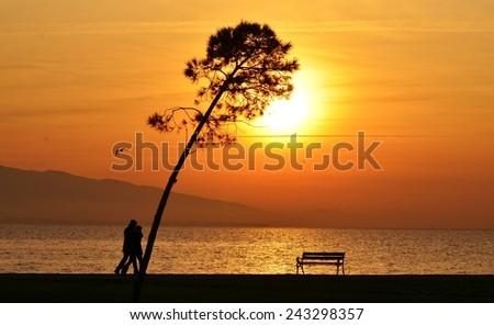 Sunset, Sunlight, Sunset Sky, Sunset Sea, Sunset Tree, Sunset Bird, Sunset People, People Walking Sunset, Bench, Sunset Bench - stock photo
