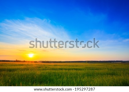 Sunset, sunrise, sun over rural countryside wheat field. Late spring, early summer - stock photo