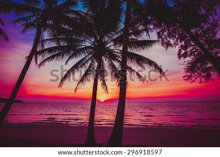 sunset tropical beach.  Beautiful sunset - stock photo