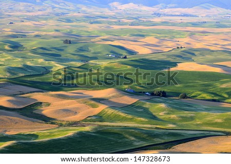 sunset view of Palouse, Washington State - stock photo