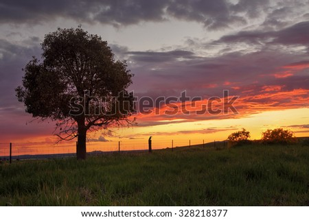 Sunset views at Greenthorpe in rural Central West NSW Australia - stock photo