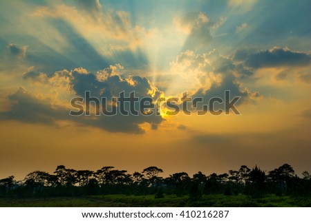 Sunset  with sun rays shining through the beautiful clouds. over the pine at Phukradung National Park. - stock photo