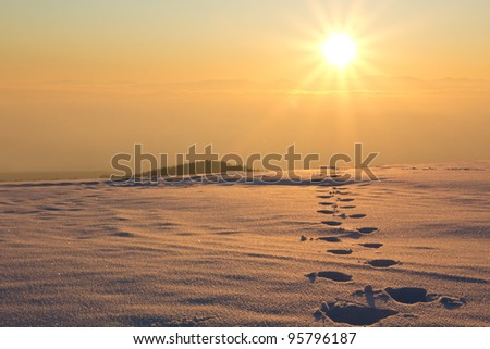 sunset with tracks in snow - stock photo