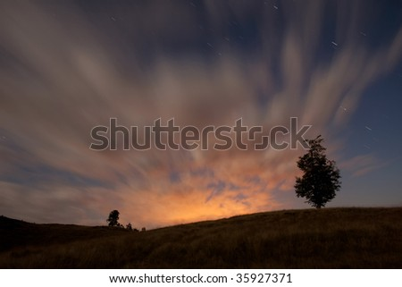 Sunset with tree and moving clouds - stock photo