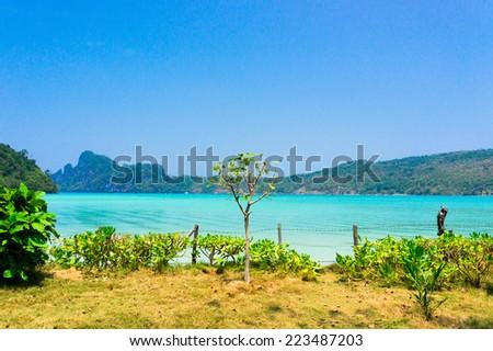 Sunshine Coast In Paradise Found  - stock photo