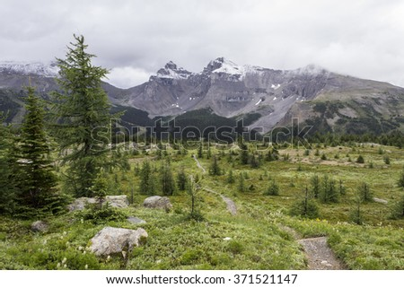 Sunshine Meadows hike in Canada - stock photo