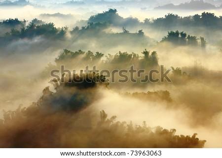 sunshine on the morning mist - stock photo