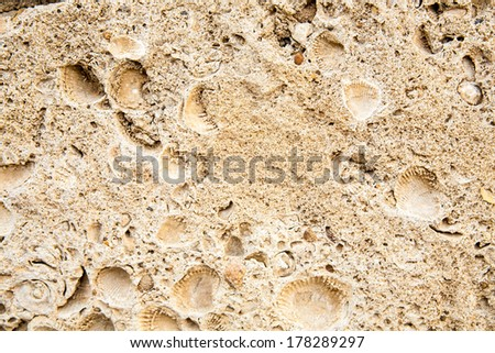 Surface of the old antique brown stone - stock photo