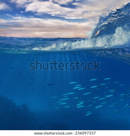 Surfing ocean wave and underwater world discovered as design template - stock photo