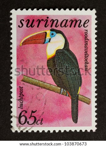 SURINAME - CIRCA 1980: Stamp printed in Suriname shows a White-throated Toucan, circa 1980 - stock photo