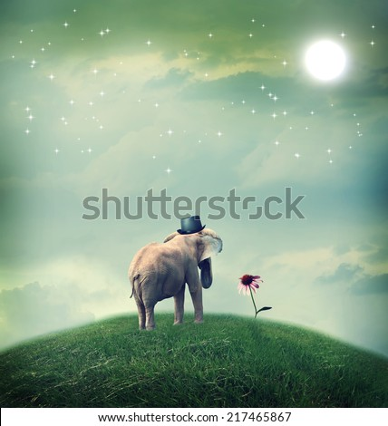 Surrealistic elephant with a hat staring at a flower - stock photo