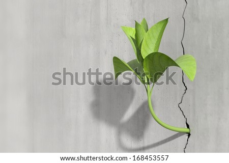 Survival and growth concept of a little 3d render of a plant in a concrete wall - stock photo