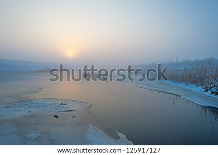 Swans on ice in a canal at dawn - stock photo