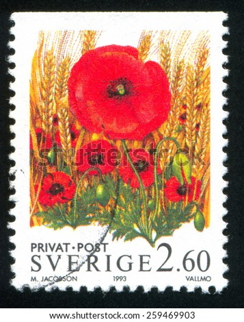SWEDEN - CIRCA 1993: stamp printed by Sweden, shows flower Poppy, circa 1993 - stock photo