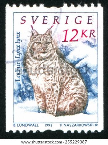 SWEDEN - CIRCA 1993: stamp printed by Sweden, shows lynx, circa 1993 - stock photo