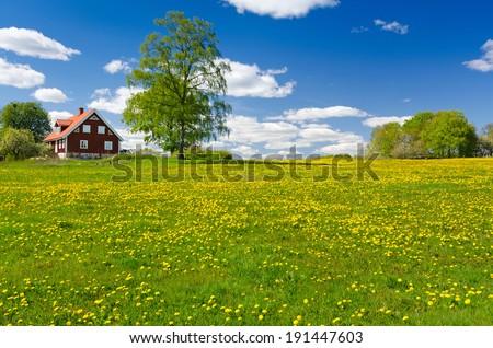 Swedish farm in May - stock photo