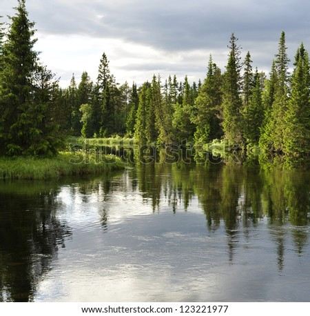 Swedish natural salmon area in summer - stock photo