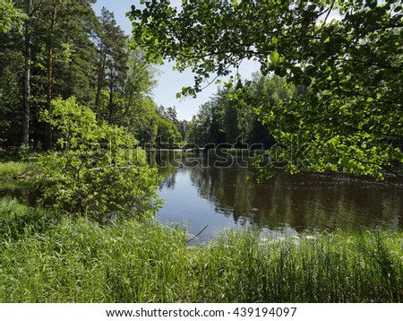 Swedish river and natural salmon area in summer - stock photo