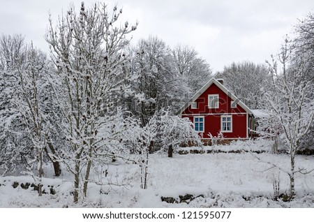 Swedish winter contrasts - stock photo
