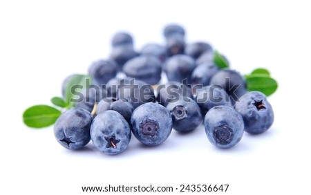 Sweet blueberries with leaves on a white background  - stock photo