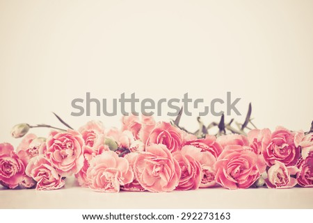sweet carnation flowers with text space , vintage and retro color tone - stock photo