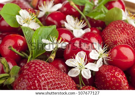 Sweet cherries and strawberry with flowers close up macro - stock photo