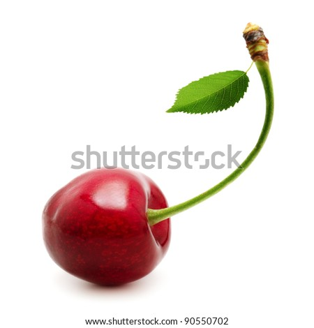 sweet cherries isolated on a white background - stock photo