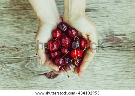 Sweet cherry or cherries in the hands of a young girl. Proper nutrition. Healthy food. - stock photo