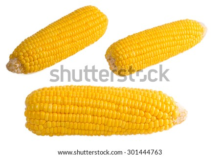 Sweet corn isolated on white background - stock photo