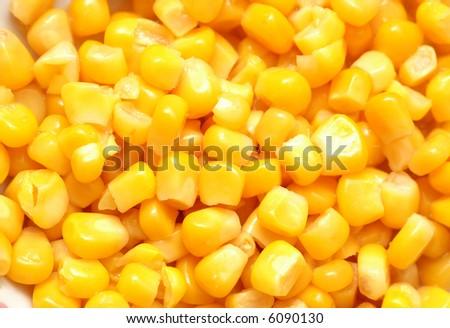 Sweet corn kernels arranged as background - more similar photos in my portfolio - stock photo