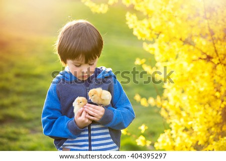 Sweet cute child, preschool boy, playing with little newborn chicks in the park, springtime - stock photo