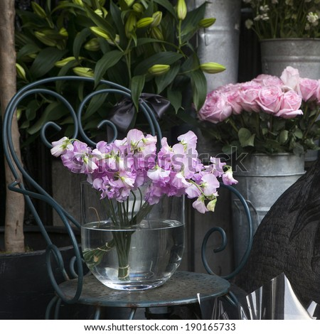 Sweet pea, Lathyrus odoratus, flowers in a crystal vase standing on cast-iron chair. - stock photo