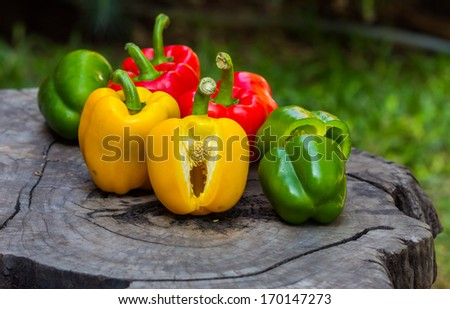 sweet peppers green red and yellow - stock photo