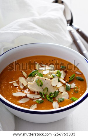 Sweet potato and butternut squash soup with chicken - stock photo