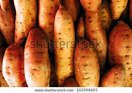 Sweet potatos on display in the market. - stock photo