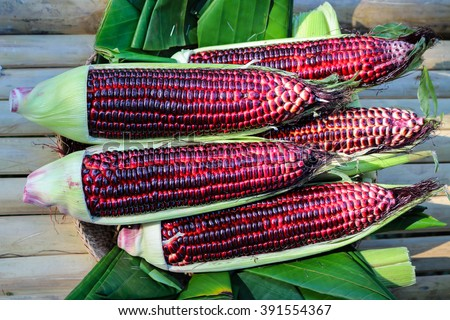sweet purple corn on banana leaf - stock photo