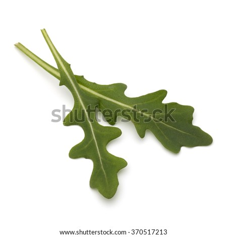 Sweet rucola salad or rocket lettuce leaves isolated on white background - stock photo