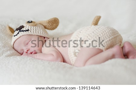 sweet sleeping newborn wearing dog costume - stock photo