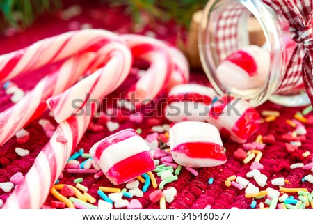 Sweet striped candy canes spilled/poured from glass jar. Green fir on red christmas background. Multicolored indoors horizontal close-up image. - stock photo