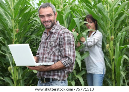 Sweetcorn farmers - stock photo