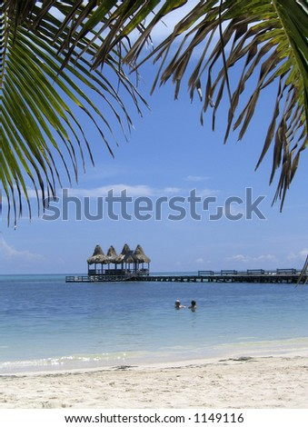 swimming in belize - stock photo