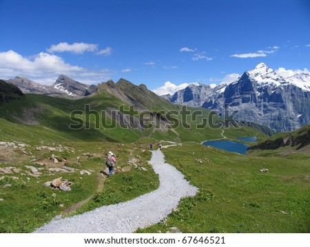 Swiss beauty, view to Wetterhorn on the way to Bachalpsee - stock photo