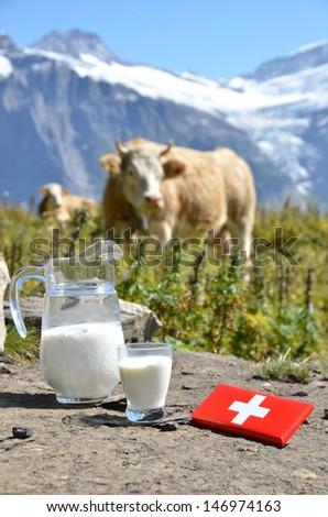 Swiss chocolate and jug of milk on the Alpine meadow. Switzerland  - stock photo
