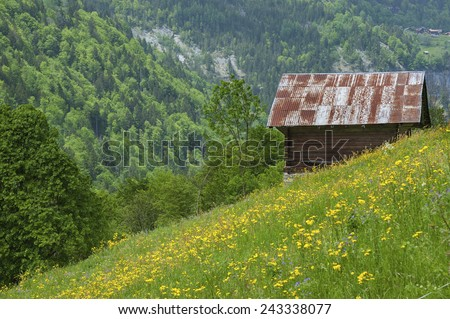 Swiss landscape - stock photo