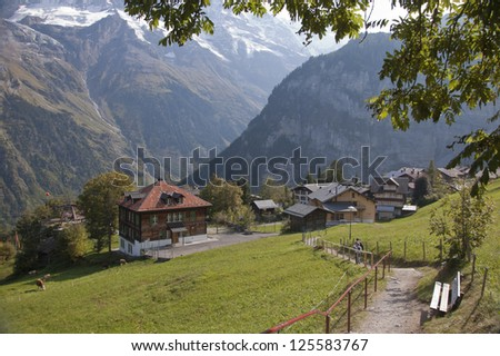 Swiss town of Gimmelwald in the alps with hiking path and tree canopy - stock photo
